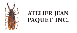 Atelier Jean Paquet